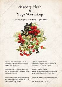 Sensory Herb & Yoga workshop